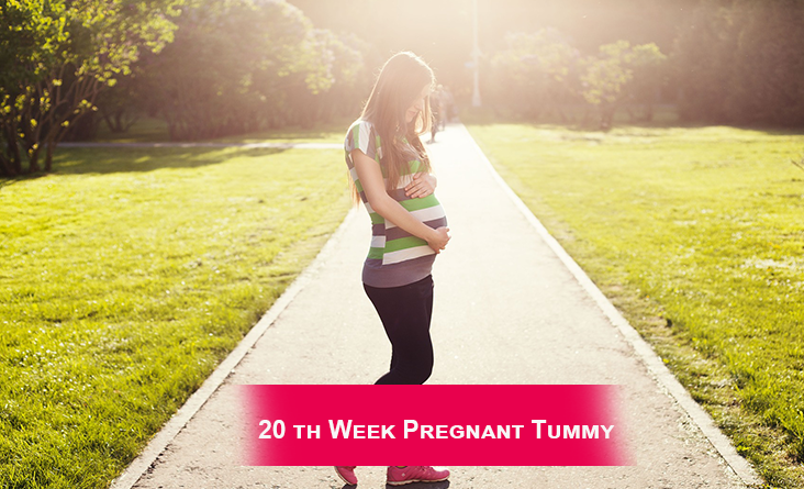 20th Week Pregnant Tummy