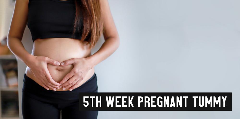 5th Week Pregnant Tummy