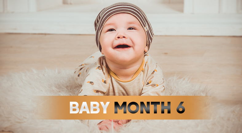 Kingdom Of Baby | 6 Month Old Baby