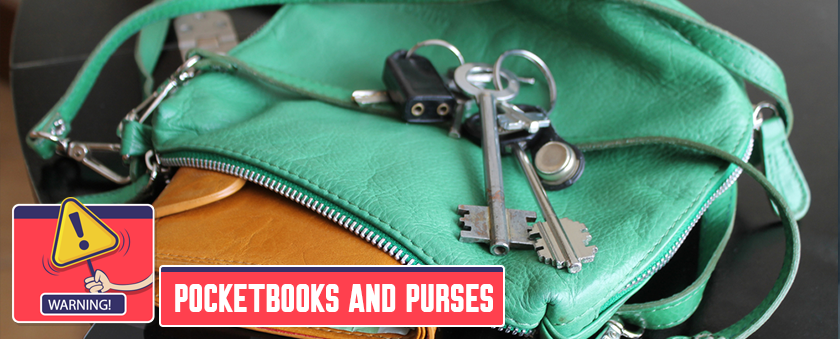 5. Pocketbooks and purses