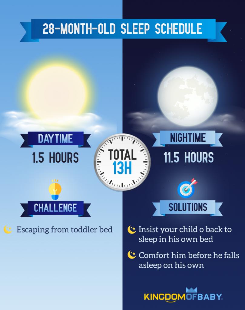 28-Month-Old Sleep Schedule