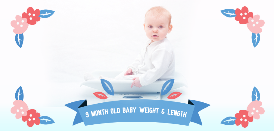 9_Month_Old_Baby_Weight_Length