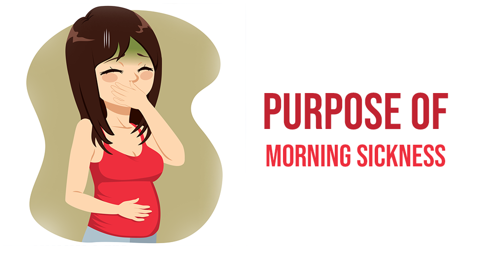 Purpose of Morning Sickness