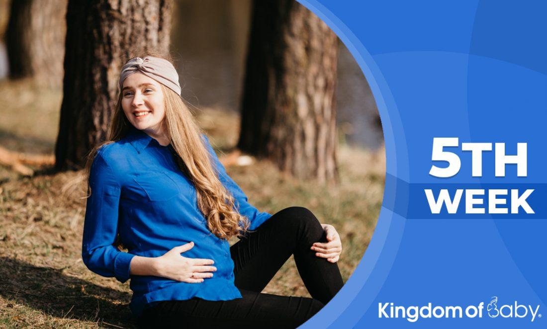 Pregnancy weeks 5