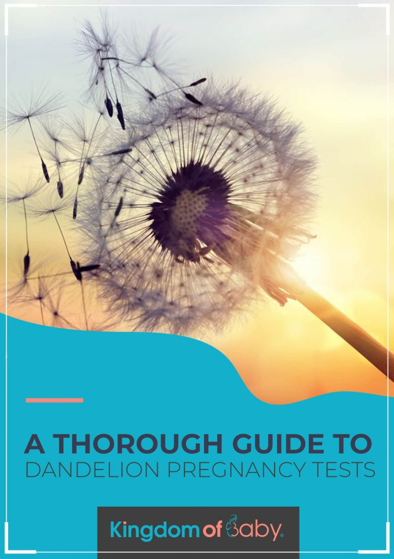 A Thorough Guide to Dandelion Pregnancy Tests