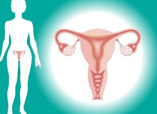 All About The Uterus Endometrial Shape, Cancer, Known facts