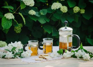Using Jasmine Tea During Pregnancy :Is It Good Or Bad ?