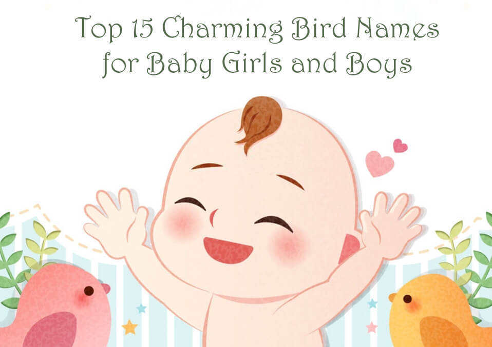 TopCharmingBirdNamesforBabyGirlsandBoys